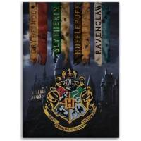 Harry Potter Fleece Blanket, 100 x 140 cm, Microfibre