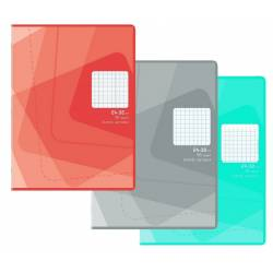 Pack of 10 notebooks 24 x 32 cm 96 pages Large squares