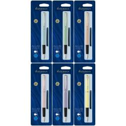 Stylos plume Waterman Paris + 6 cartouches d'encre bleu