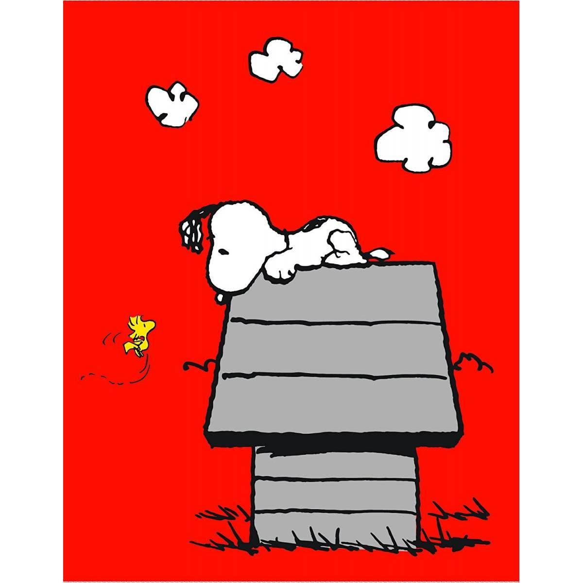 Snoopy - Plaid Polaire Enfant Classic Red - 110 x 140 cm