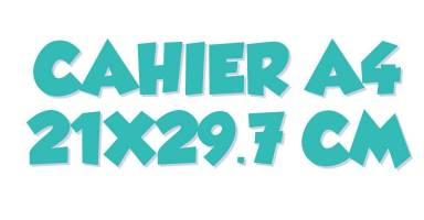 Cahiers A4 (21x29.7cm)